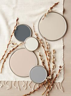 27 Expert-Approved Neutral Paint Colors (and How to Use Them) Coastal Paint Colors, Popular Paint Colors, Neutral Paint Colors, Warm Colour Palette, Paint Color Schemes, Best Paint Colors, House Color Schemes, Bedroom Paint Colors, Interior Paint Colors