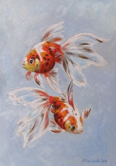 Марина Ефремова. Картина Ситцевые золотые рыбки. 2011. Картон, масло. 35х25 Koi Fish Drawing, Fish Drawings, Art Drawings, Koi Art, Fish Art, Watercolor Fish, Watercolor Paintings, Piercing Implant, Color Pencil Art