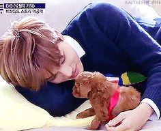 Kai and a little cute puppy~~ I think I near died from how cute this is ❤️