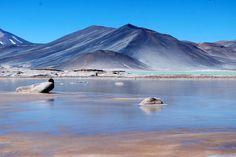 Hot water salt lake in San Pedro de Atacama, Antofagasta Region, Chile.