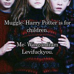 Muggle: Harry Potter is for children. Me: Wingardium Levifuckyou.