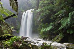 Hopetoun Falls, Beech Forest, near Otway National Park, Victoria, Australia.
