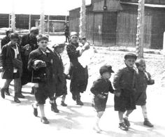 Auschwitz, to the gas chambers - I wonder,.did the older brother know of what fate awaited them? I imagine him telling stories to distract his younger siblings from the death that is but moments away. Religion, Never Again, Lest We Forget, World History, World War Two, Historical Photos, Wwii, America, History