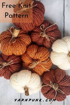 Learn how to get started with amigurumi in the knit pumpkins! Create your own cu… Learn how to get started with amigurumi in the knit pumpkins! Create your own cu…,Simple Amigurumi Learn how to. Beginner Knitting Projects, Yarn Projects, Crochet Projects, Small Sewing Projects, Stem Projects, Knitting Patterns Free, Free Knitting, Christmas Gift Knitting Patterns, Halloween Knitting Patterns