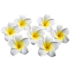 Pixnor Plumeria hawaïen mousse fleur de frangipanier pour mariage décoration fête 100 Pcs 6 CM: Amazon.fr: Cuisine & Maison