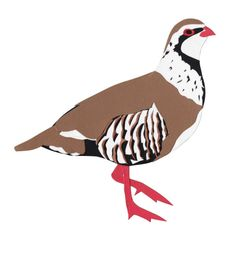 Red-legged Partridge papercut by Paper Animals, Paper Cutting, Bird, Instagram Posts, Partridge, Map, Handmade, Animales, Hand Made