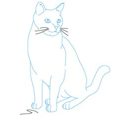 Learn How to Draw Cats - Follow our simple step-by-step drawing lessons. We have drawing tutorials with animals, superheroes and more cool stuff.