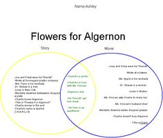 flowers for algernon themes symbols and motifs in this flowers for algernon google search