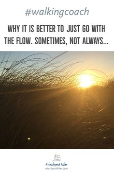 Why it is better to just go with the flow. ~ A Backyard Hiker You Can Do, Just Go, Take That, Let It Be, Keep Strong, Take A Step Back, Wind Of Change, Very Scary, You Changed
