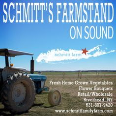 Schmitt's Farm Stand on Sound | Long Island Wine Country