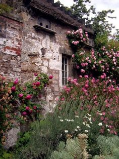 A rose garden surrounding the old stone cottage in the back garden. Pink Garden, Dream Garden, Roses Garden, Summer Garden, Jardin Decor, The Secret Garden, Garden Cottage, Rose Cottage, Cottage Style