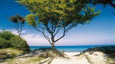 #Darß #Zingst Karibisches Flair am Darßer Weststrand, Fischland-Darß-Zingst, © TMV/Voigt& Kranz