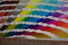 simulador de ambientes Bruguer - carta de colores