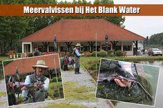 Meerval_vissen_Blank_Water