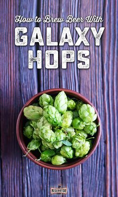How to Brew Galaxy Hops Hops Plant, Beer Hops, Beer Brewing Kits, Scotch Whiskey, Irish Whiskey, Pint Of Beer, Brew Your Own, Bourbon Drinks, Beer Recipes
