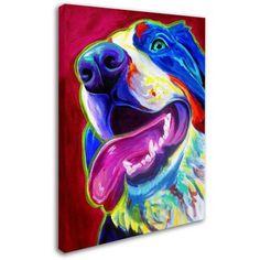 Trademark Fine Art Sunshine Canvas Art by DawgArt, Size: 24 x 32, Multicolor