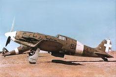 Macchi C.202, 81-4, 81° Squadriglia
