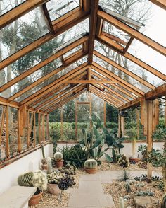 Another #fbf to one of our most popular posts of 2016 and the incredible cactus house at @winterbournehg