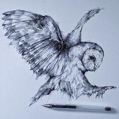Bird sketch flying 31 ideas for 2019 Owl Tattoo Drawings, Bird Drawings, Owl Tattoos, Tattoo Ink, Arm Tattoo, Fish Tattoos, Sleeve Tattoos, Fly Drawing, Eagle Drawing