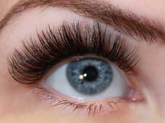 Vippeextensions volum vipper volume lashes XD lashes close up