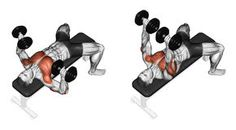 Exercising. Link Dumbbells From Behind The Head - Download From Over 59 Million High Quality Stock Photos, Images, Vectors. Sign up for FREE today. Image: 43722841