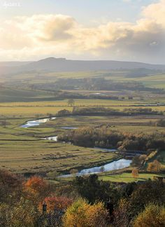 The River Coquet, near Thropton, Northumberland, England by Wipeout Dave