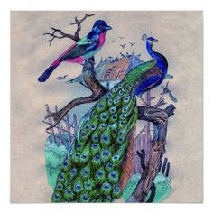 $$$ This is great for          Vintage Blue Elegant Peacock &Colorful  Bird Poster           Vintage Blue Elegant Peacock &Colorful  Bird Poster We provide you all shopping site and all informations in our go to store link. You will see low prices onThis Deals          Vintage Blue ...Cleck Hot Deals >>> http://www.zazzle.com/vintage_blue_elegant_peacock_colorful_bird_poster-228172239914821308?rf=238627982471231924&zbar=1&tc=terrest