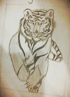 this is my tiger i made in science last year