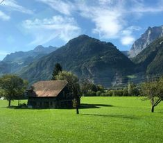 A Day Trip On The Gotthard Panorama Express. An incredibly scenic journey by rail and by boat through the Swiss countryside Linkedin Photo, Switzerland Tour, Scenic Train Rides, Lake Zurich, Jungfraujoch, Train Tour, Great Days Out, Train Journey, Going On Holiday