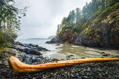 Secluded beach along the Tonquin trail in Tofino