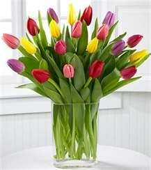 Did you know tulips are available year-round? Tulips are an extremely popular wholesale and wedding flower that come in a variety of gorgeous colors year-round at GrowersBox.com!