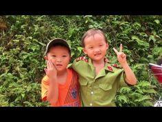 BAIE HALONG TERESTRE ET RESERVE NATURELLE PULUONG VIETNAM Voyage sur mesure au Vietnam/ Voyage au Vietnam avec Voyagesviet Travel - guide independant Agence de voyage locale au Vietnam Son site :http://voyage-vietnam.com/ ou http://www.voyagesviet.com