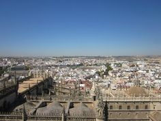 From the top of Sevilla