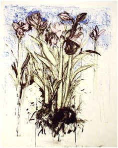 View Watercolor January by Jim Dine on artnet. Browse upcoming and past auction lots by Jim Dine. Drawing Projects, Art Projects, Artist Painting, Painting & Drawing, Jim Dine, Observational Drawing, Botanical Drawings, Flower Art, Flower Images