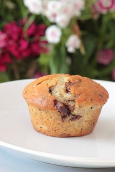 Chocolate Chip Banana Muffins - great for a quick breakfast or mid morning snack :D