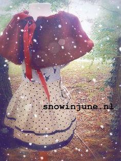 snowinjune.nl winter 2013/2014