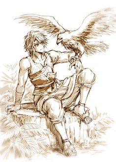 Links hawk in twilight princess was really cool! Especially when you can talk to him.