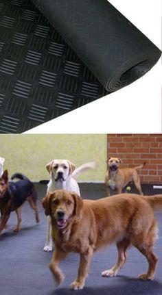 Dog Flooring