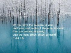 Another Lao Tzu quote applicable to Buddhist meditation. Patience and right action.