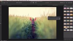 Affinity Photo, la competencia definitiva de Photoshop