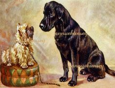 Dog Art Cairn Terrier and Black Lab Dog Print 1920s