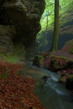 ✮ Mullerthal Gorge, Petite Suisse, Luxembourg, France