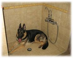 dog shower: a must add to the garage, my next house will have this!! Rotties are too big to lift in the tub and too wide for my shower lol