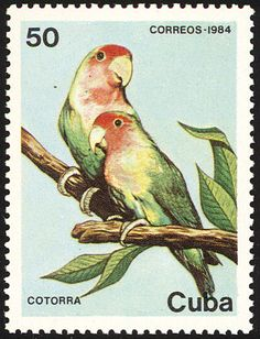 Rosy-faced Lovebird stamps - mainly images - gallery format