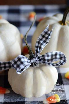 White pumpkin black check