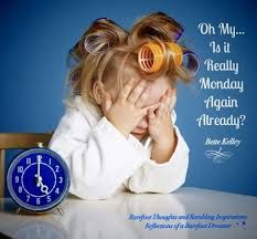 Image result for omg it's monday again