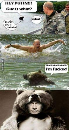 Don't mess with Putin Some Funny Jokes, Crazy Funny Memes, Really Funny Memes, Stupid Funny Memes, Funny Laugh, Wtf Funny, Funny Relatable Memes, Funny Cute, Funny Meme Pictures