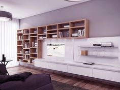 Modern Bookshelves and Wall System Visualization for Gorgeous Apartment Furniture Ideas