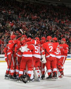 Detroit Red Wings beat Chicago Black Hawks  Group Hug for fans - January 22, 2014 - ESPN