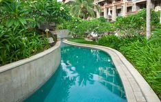 If you have the space, pool canals are fun especially if you create a flowing water effect so that you can travel around your pool in an inner tube or air mattress. This is a great meandering narrow pool canal with lush vegetation on each side creating a natural canal/river effect.